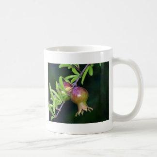 Green pomegranate fruit coffee mug