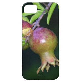Green pomegranate fruit iPhone 5 covers