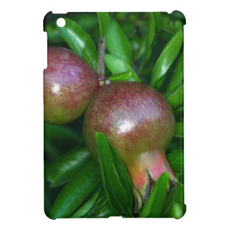 Green pomegranate fruit (Punica granatum) iPad Mini Cover
