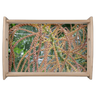 Green/Red Plant Serving Tray