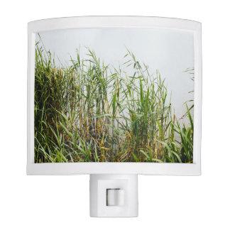 Green Reed, Grey Lake Background, Nature Nite Light