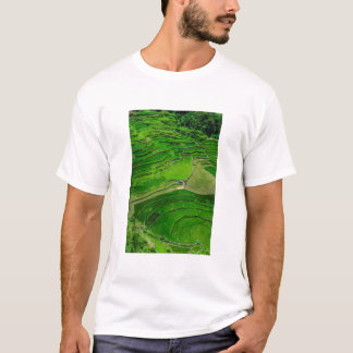 Green Rice terraces, Philippines T-Shirt