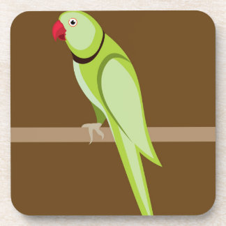 Green ringneck parrot vector drink coasters