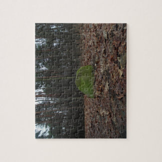 Green rock in forest, autumn photography puzzles