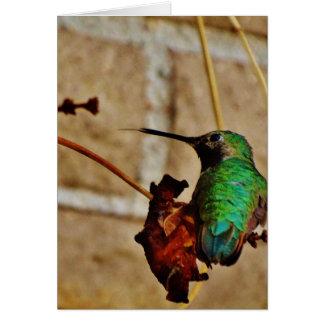 green ruby hummingbird card