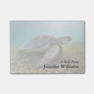 Green Sea Turtle At Dusk | Akumal Bay Post-it Notes