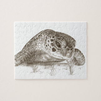 Green Sea Turtle Drawing Jigsaw Puzzle