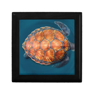 Green Sea Turtle Gift Box