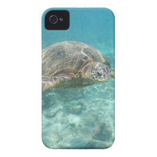 Green Sea Turtle iPhone 4 Case
