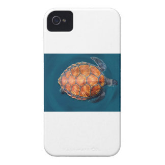 Green Sea Turtle iPhone 4 Covers