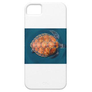 Green Sea Turtle iPhone 5 Case