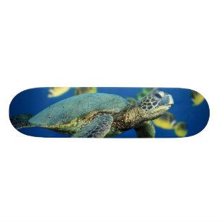 Green Sea Turtle Skate Decks