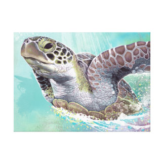 Green Sea Turtle Stretched Canvas Print