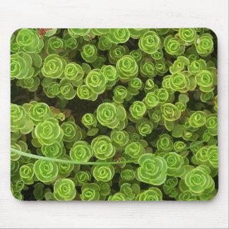 Green Sedum Mousepad 2