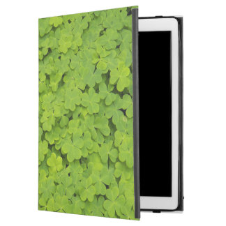 "Green Shamrocks Floral iPad Pro 12.9"" Case"