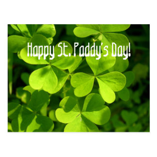 Green Shamrocks, St. Paddy's Day Postcard