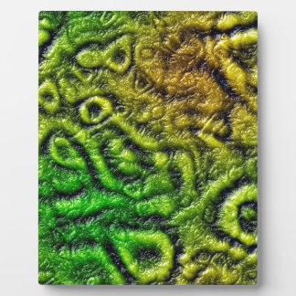 Green skin texture plaque