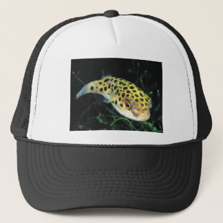 Green spotted puffer trucker hat