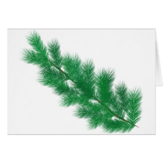 Green spruce branches christmas decoration card