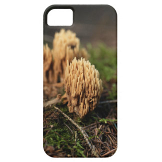 Green staining coral fungi (Ramaria abietina) Case For The iPhone 5