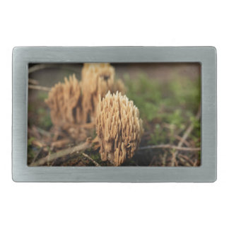 Green staining coral fungi (Ramaria abietina) Rectangular Belt Buckle
