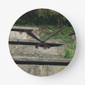 Green stairs wall clock