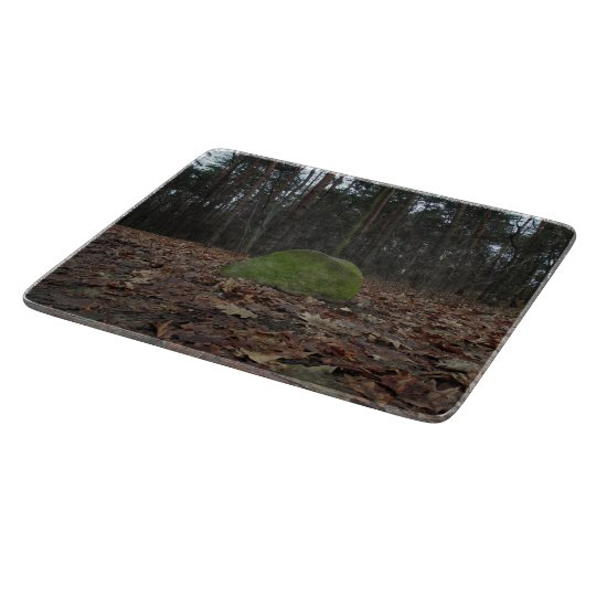 Green stone, artsy photo, polish forest autumn boards
