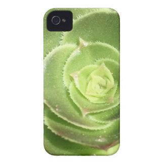 Green succulent Case-Mate iPhone 4 cases