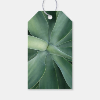 Green Succulent Gift Tag Pack Of Gift Tags