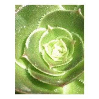 Green succulent letterhead