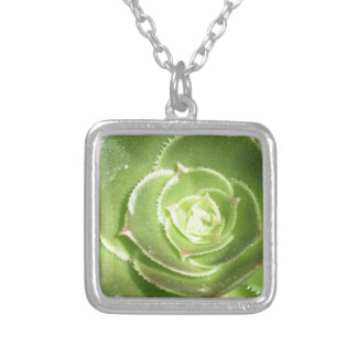 Green succulent silver plated necklace