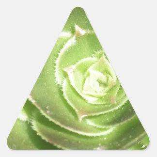Green succulent triangle sticker