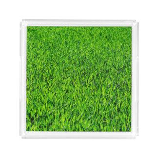 Green Summer Grass Texture Acrylic Tray