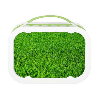 Green Summer Grass Texture Lunch Box