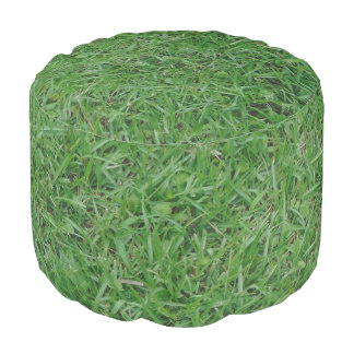Green summer grass, yard, lawn 099 photo pouf