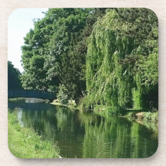 Green sunny spring day green trees river walk coaster
