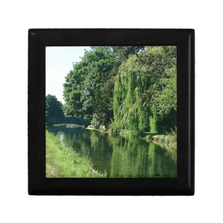 Green sunny spring day green trees river walk gift box
