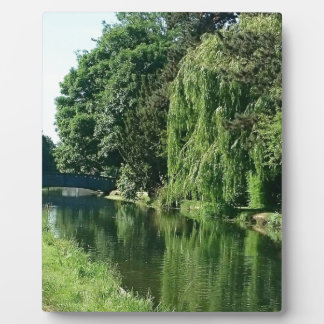 Green sunny spring day green trees river walk plaque