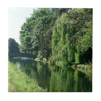 Green sunny spring day green trees river walk tile