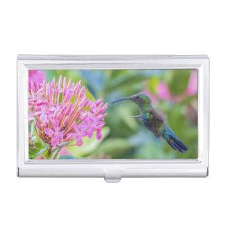 Green Throated Carib Hummingbird Card Holder Business Card Holders