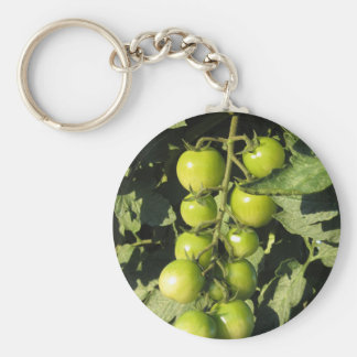 Green tomatoes hanging on the plant in the garden basic round button keychain