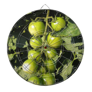Green tomatoes hanging on the plant in the garden dartboard with darts