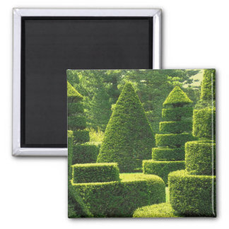 Green Topiary - Magnet #1