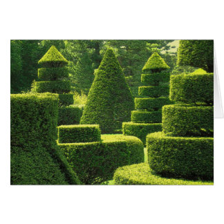 Green Topiary - Note Card