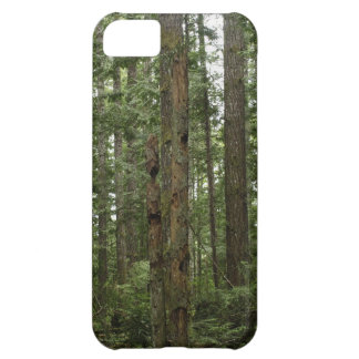 Green Totem Tree Forest Nature Scene iPhone 5C Case