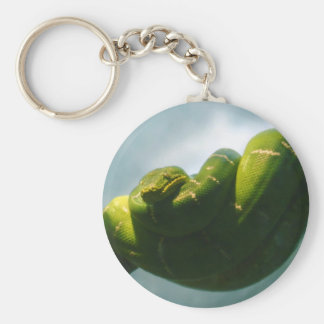 Green Tree Boa Basic Round Button Keychain