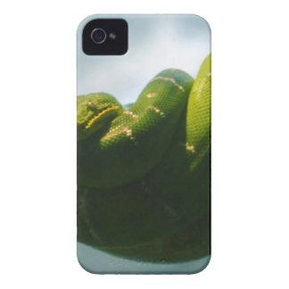 Green Tree Boa Case-Mate iPhone 4 Case