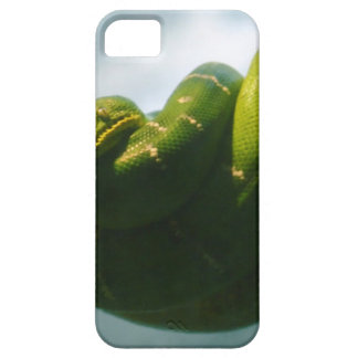 Green Tree Boa iPhone 5 Cases