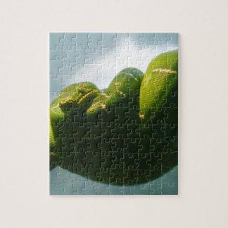 Green Tree Boa Jigsaw Puzzle