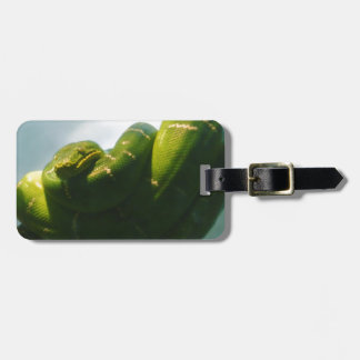 Green Tree Boa Luggage Tag